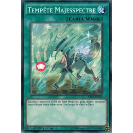 DOCS-FR059 Majespecter Storm Common Normal Spell Card