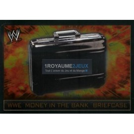 Money In The Bank Briefcase