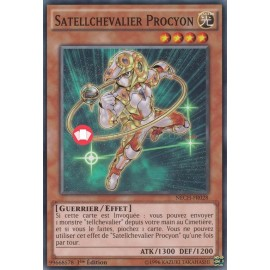 Satellchevalier Procyon Commune