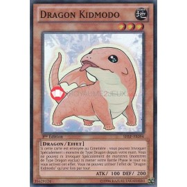 SHSP-FR094 Dragon Kidmodo Super Rare
