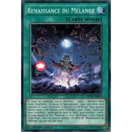 DOCS-FR053 Shuffle Reborn Common Normal Spell Card