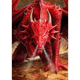 Protège cartes X 50 Standard - Wrath of the Dragon.