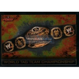 World Tag Team Championship