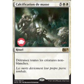 Calcification de masse M15-018/269