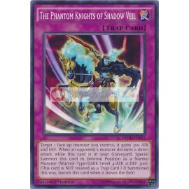 NECH-EN072 The Phantom Knights of Shadow Veil Common Normal Trap Card